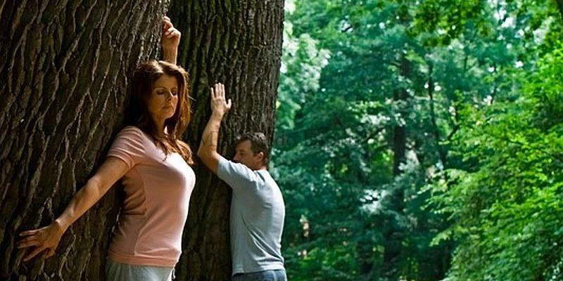 Kokio medžio Laiptu pakopos energija jums tinkamiausia
