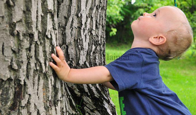 Laiptu gamyba iš stipriu medžių
